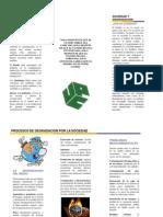 folleto ecologia