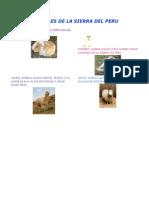 Animales de La Sierra Del Peru