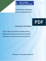 Espaços Vetoriais editado.docx