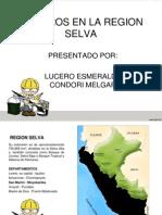 Peligros Region Selva