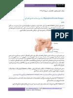 Prostate 1