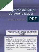 CLASE 1-1 Cartera de Servicios Del Programa Adulto Mayorantiguo
