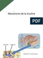 Animacion insulinaa