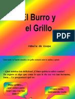 Burro Grillo
