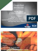 Cass Cirugia Fetal Introduccion