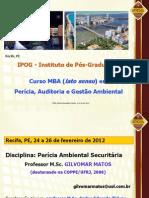 Pericia Ambiental Securitaria1