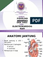 Elektrokardiogram