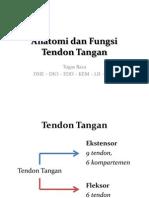 Anatomi Dan Fungsi Tendon Tangan