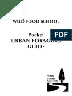 Urban Foraging Guide