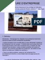 cultureentreprise.pdf