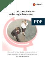 Gestión del Conocimiento en las organizaciones - Módulo 01 - La gestión de conocimiento en la nueva economía - El capital intelectual y los activos intangibles