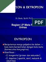 +ENTROPION