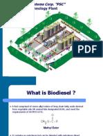 001_BioDieselPresentation_PSCRev_5_01_03_08