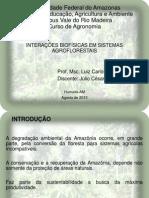 Interações Biofísicas em Sistemas Agroflorestais