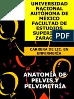PELVIMETRÍA+++
