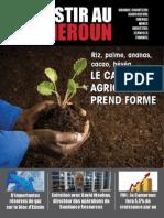 Investir Au Cameroun 15