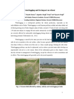 Waterlogging and its impact on wheat/Ashwani Kumar, Rajesh Kumar, Jogendra Singh, Pooja and Vijayata Singh