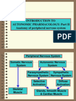 Introduction to Autonomic Pharmacology Part II - Anatomy of