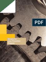 Loss Prevention PDF