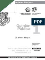 Opinion Publica - Modulo 1