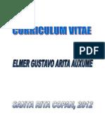 Curriculum Vitae Elmer PDF