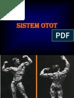 STRUKTUR & FUNGSI OTOT