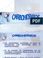 Carbohidratos Exp Miercoles +