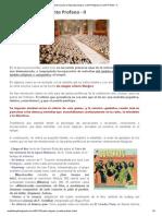 Musica Para La Sagrada Liturgia_ Canto Religioso y Canto Profano - II