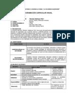 Programacion Curricular de Pfrh 2013