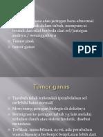 Perbedaan Tumor Ganas Dan Jinak