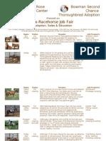 Ex-Racehorse Job Fair Flyer