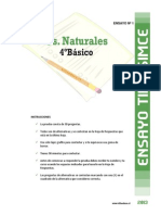 ensayo simce villaeduca.pdf
