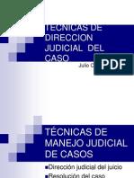 4 Técnicas de dirección judicial AMAG SET 2009