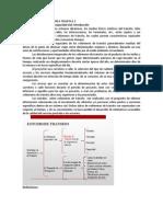 INGENIERIA DE TRANSITO AREA TEMATICA 2.docx