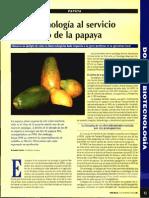 biotecnologia añ servicio del cultivo de la papaya