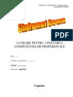 Documentatie HTML Model (1)