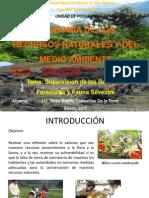 Exposición Superv Rec Forestales y Fauna Silvestre