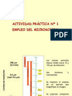 Power Laboratorio Veterinaria.pdf