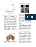1.- Anatomía de Tórax y trauma torácico