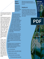 Pipeline Brochure