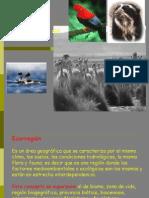 Fauna de las Ecorregiones del Perú