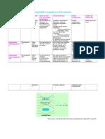 propiedadesmagnticasdelamateria-110131162236-phpapp02