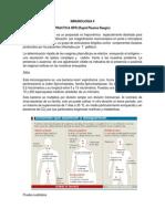Imnunologia II.informe