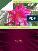 5.1 Glass