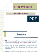 Scale Up Principles