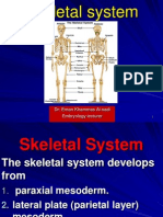12 Skeletal System 1