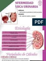 ENFERMEDAD LITIÁSICA URINARIA (2)