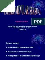 IMS-UII'09