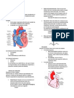 Notas Cardio
