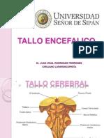 TALLO CEREBRAL.pptx